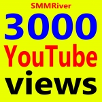 Fast 3000+ Ad-sense Safe Vie ws High Retention & Non Drop