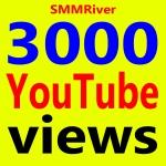 Fast 2000 To 3000 Ad-sense Safe Vie ws High Retention & Non Drop