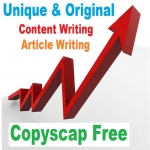 Custom Article Writing For You