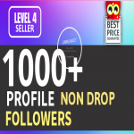 Add 1000 Fast HQ Account Followers