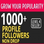 Add 1000 High Quality Fast Profile Followers NON DROP PERMANENT Guaranteed