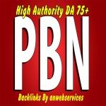 8 Permanent Dofollow PA60 - PA80 High Authority PBN Backlinks
