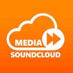 1500 soundcloud followers or Social Media promotion