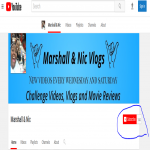 Provide you Manually High quality 130+ YouTube SubSscribers only