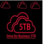 setup 5TB on Drive permanent storage