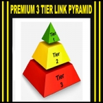 BOOST your Website to the 1st Page of Google with PREMIUM 3 Tier Link Pyramid