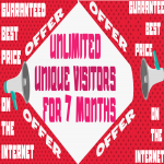 Unlimited Unique Visitors Traffic For 7 Month