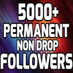 Add 5000+ High Quality Fast Profile Followers NON DROP to Your Account
