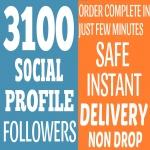 Add Fast 3100+ NON DROP Followers