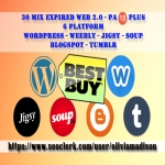 provide 30 expired wordpress weebly tumblr jigsy soup blogs