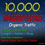 Drive 10000 Target Web Traffic for 30 Days