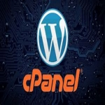 1 Year cPanel - FREE SSL - FREE WEBSITE BUILDER