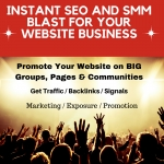 Do an Instant SEO and SMM Blast for Your Website Business