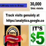 30,000 direct visits traffic for 5 only,  GUARANTEED