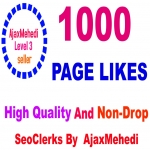 Do Genuine Promotion 1000 High-Quality Page Likes & Non Drop Service