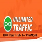 1,000+ Daily Traffic to Your Website for 90 days