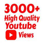 Super Fast 3000 High Quality Youtube vie ws