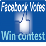 Now give you 130 very fast facebook vote service for