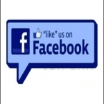 I will Give You 600+ REAL Facebook Page Likes