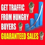 Unlimited,  Web,  Traffic,  For 30 Days from